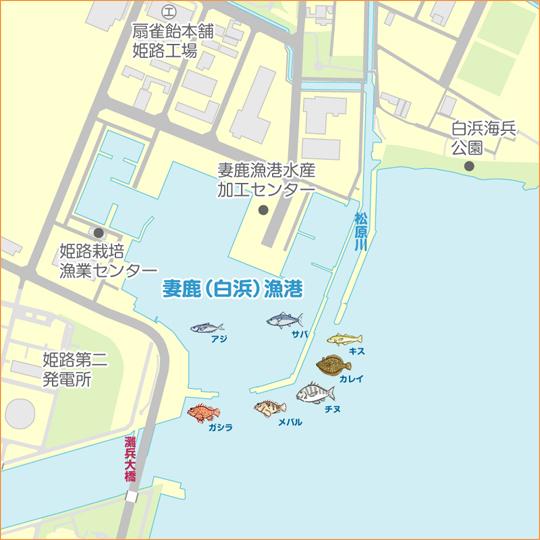 釣果 姫路 姫路周辺 釣果情報