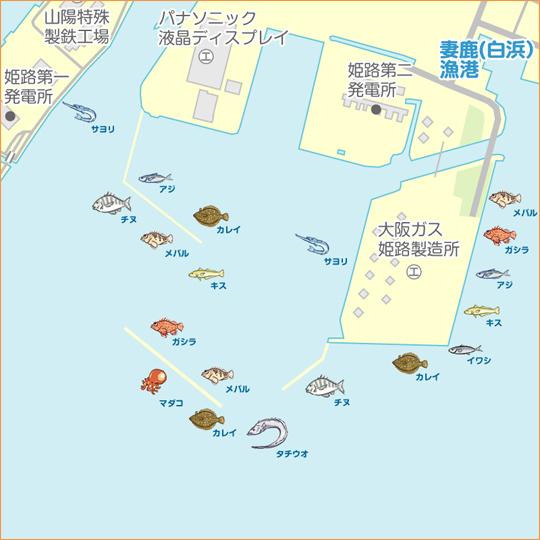 姫路 釣り