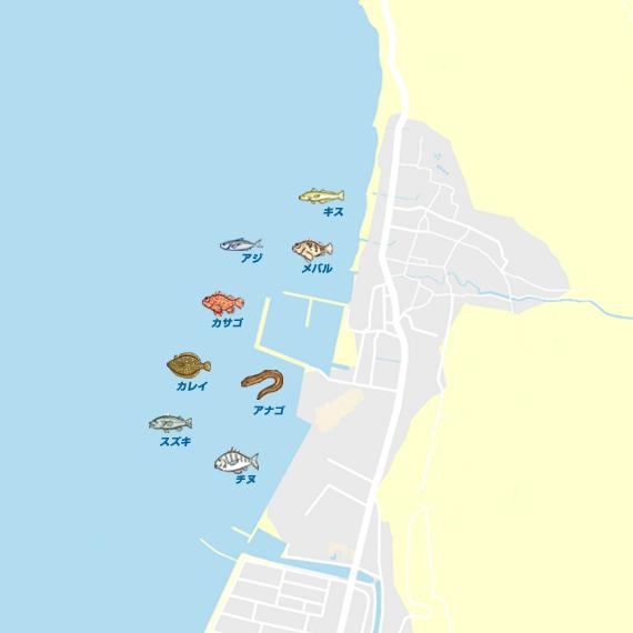 浦生漁港 陸っぱり 釣り・魚釣り...