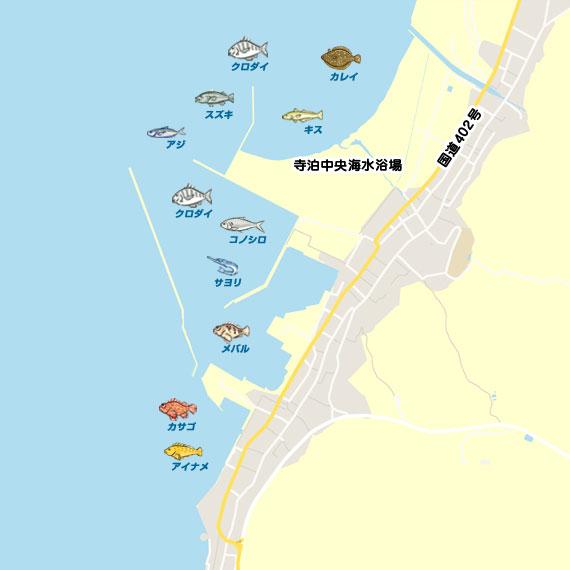 カマスと根魚 | 新潟 寺泊港 ショアジギング ソイ | 陸っぱり ...