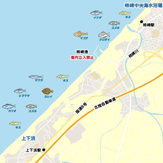 柿崎〜上下浜 陸っぱり 釣り・魚釣り | 釣果情報サイト カンパリ