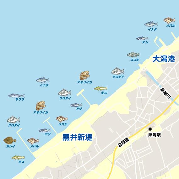 大潟港〜黒井新堤 陸っぱり 釣り・魚釣り | 釣果情報サイト ...