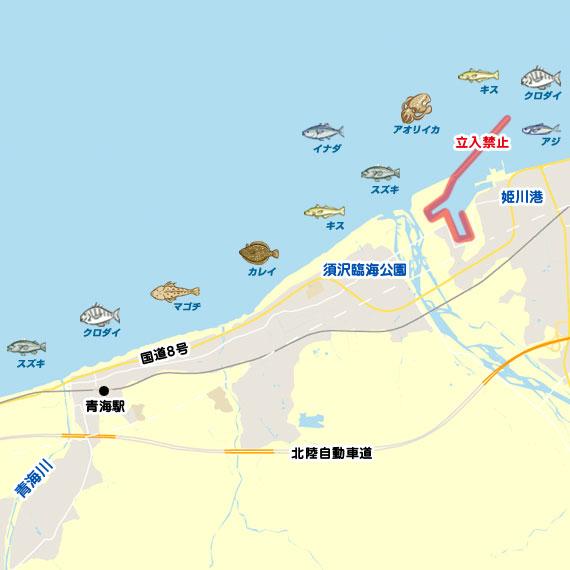 姫川〜青海川 陸っぱり 釣り・魚釣り | 釣果情報サイト カンパリ