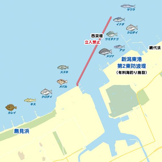 新潟 東港 天気