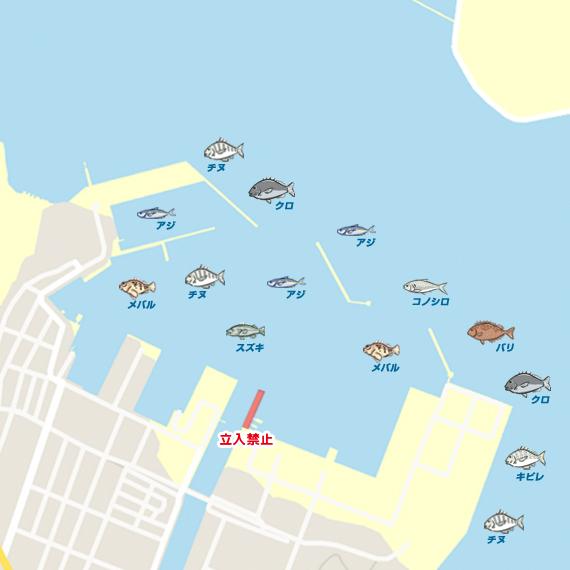 佐伯港 陸っぱり 釣り・魚釣り | 釣果情報サイト カンパリ