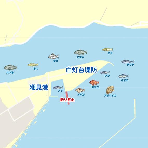 釣果 境港
