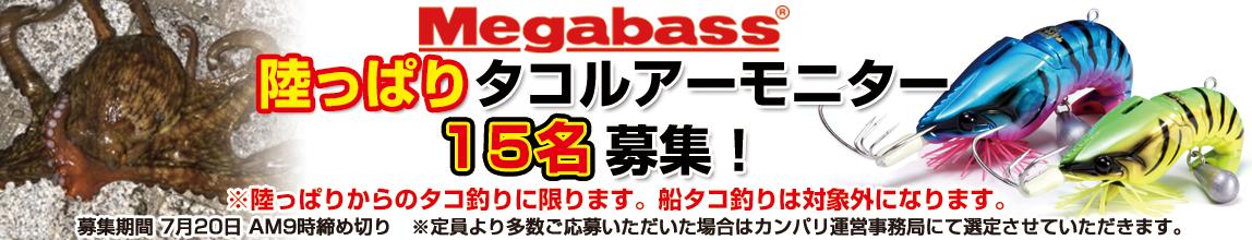 Megabass(メガバス) 陸っぱりタコルアーモニター募集