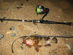 垂水漁港 ボトムズル引きでガシラ釣り