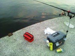 夕方☪食コンへエビ撒き釣りに