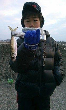 【20日】今朝も水軒でアジが釣れています♪