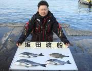 チヌにウマヅラも釣れています!黒島の磯