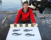 オキアミフカセでグレ釣果 in 鷹島のカンドリ
