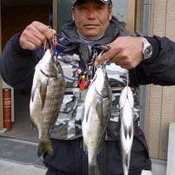 湯浅の磯で紀州釣り、チヌ3枚あがりました!
