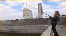 釣りシーズン到来!マリーナシティ釣り堀でマダイ&青物を楽しもう!