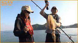 ウキ釣りで狙う!日中のアオリイカ(春イカ)in和歌山県 湯浅
