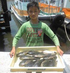 オキアミ・イシゴカイを使った浮き釣りでグレ&アジ