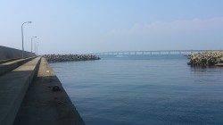 田尻漁港のガシリングでソイ・ハゼの釣果