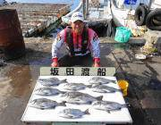 湾内の筏でチヌ9枚・黒島の筏でチヌのほかチャリコ数釣り