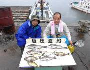 衣奈、湾内の筏でチヌ釣り