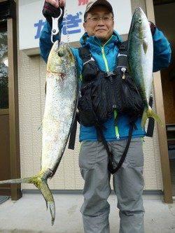 湯浅の磯のルアー釣果〜シイラ85cm&ハマチ50cm