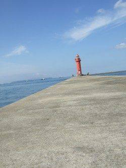中島埠頭で投げ釣り 魚種多様に楽しめました