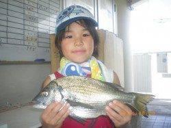 姫路市立遊漁センター キッズのチヌ釣果☆