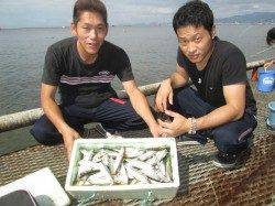 サバ、アジの釣果が目立ってます 尼崎市立魚つり公園