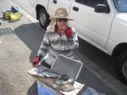 大磯でフカセ釣り 餌はボイルオキアミです