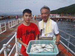 須磨海づり公園 サビキでアジ・サバの釣果
