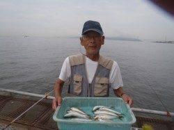 須磨海づり公園 サビキで良型アジの釣果