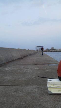 紀ノ川河口のタチウオ狙い 完全に暗くなってようやくアタリが