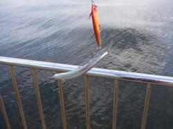 南芦屋浜 F3.5のしっかりしたタチウオが表層でヒット