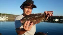萩尾にて紀州釣り 日の出とともに竿出しカワハギが連発♫