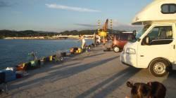 日高港湾のタチウオ狙ってきました 82匹の釣果で大満足!