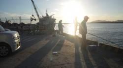 日高港タチウオワインド グッドサイズもでて74匹の釣果に満足!
