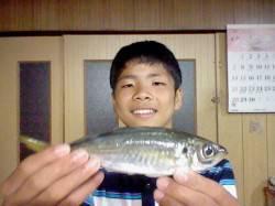 浅茂川 カゴ釣りでサヨリ&サビキでアジ狙いの釣果