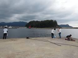 香住漁港 サビキでアコウのほかグレ・カワハギ、ちょい投げでキスなど