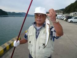 津居山漁港小島岸壁にてキス調査 キス・コチ・ヒイラギ・ハゼ