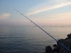 市川河口へ投げ釣りに キビレ・ガシラ・アナゴ・ハゼなど