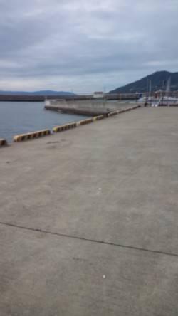 須磨にてダンゴ釣り 開始後すぐチヌ42cmがヒット