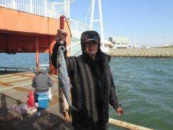 尼崎市立魚つり公園 サヨリのほかサンバソウ・アイゴ