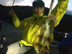 天橋立周辺エギング 夕方のプチ時合いでのアオリイカ釣果