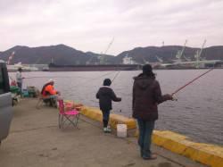 野瀬埠頭でイワシ&ママカリ アジ・サヨリは釣れませんでした