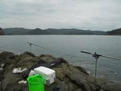 神谷漁港 ヤエンは不発も探り釣りでカワハギ&ツバス