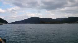 津居山港 チョイ投げでハゼ、アタリも爽快で楽しめました!