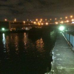 南港 アジングのアジ狙いは尺アジまであと3cm