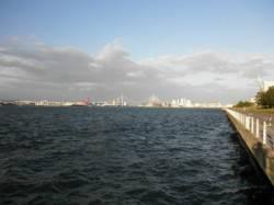 大阪南港 ワインドでタチウオ6匹 アタリは倍以上ありました