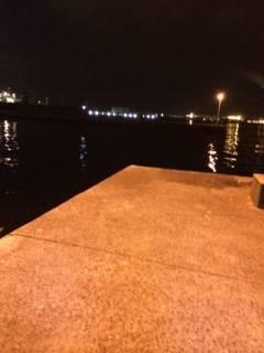 大阪南港アジング 常夜灯が点灯してからポツポツ表層でアタリました