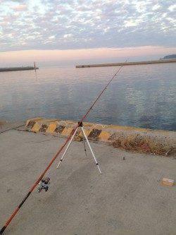 都志にて投げ釣りでキス 時合には3投に2投は釣れるペースでした♪