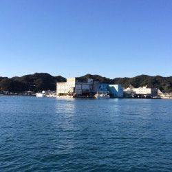 勝浦漁港 湾内で潮がよく流れているところを通すとヒラメの釣果